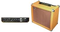 ZAR F962235 A-40R Acoustic Guitar Amplifier