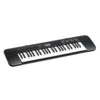 CASIO CTK-240